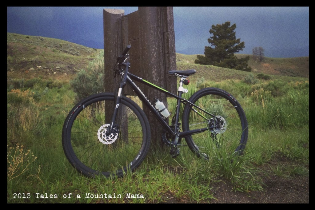 Specialized Ariel Disc The Multipurpose Bike For Women Tales