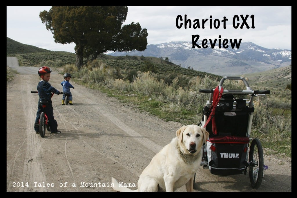 Chariot CX1 Review