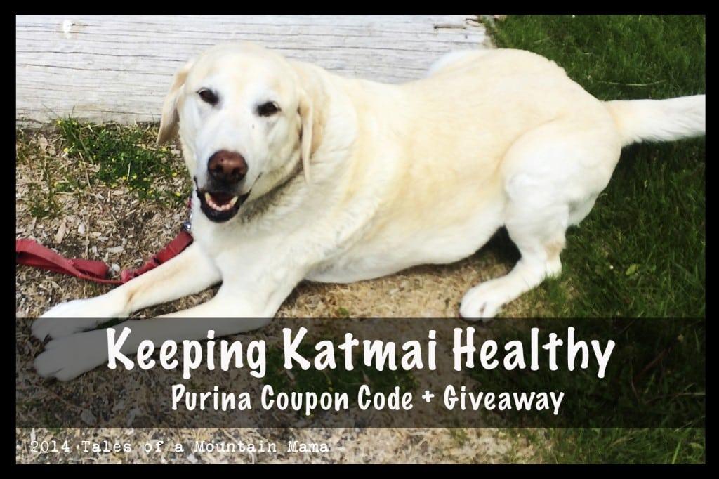 keepingkatmaihealthy