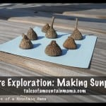 Nature Exploration: Making Sunprints