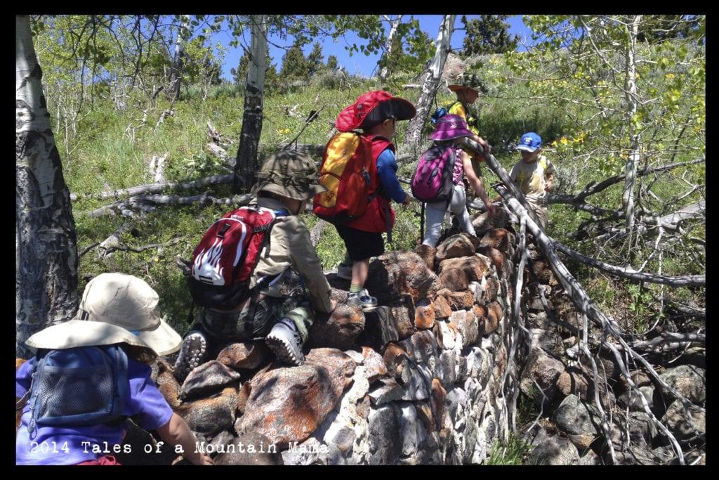 This Moment {Yellowstone Tiny Trekkers}