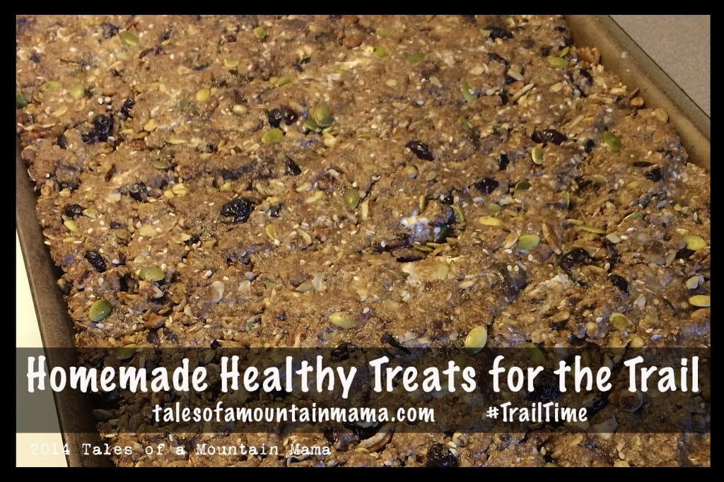 Homemade Healthy Treats for the Trail