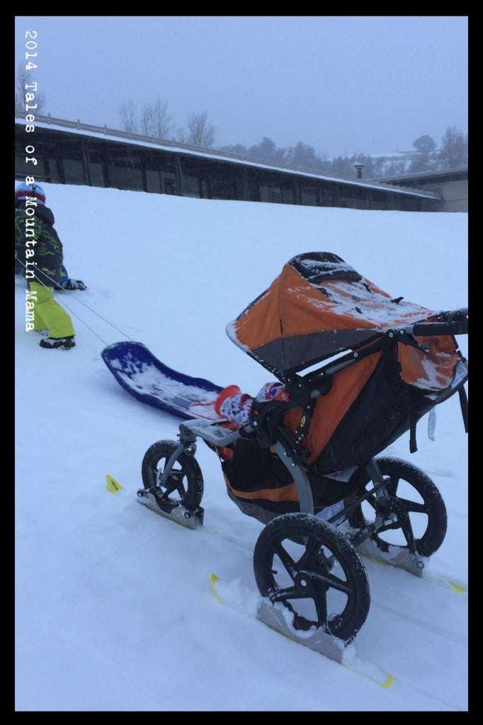 Polar Stroller Review