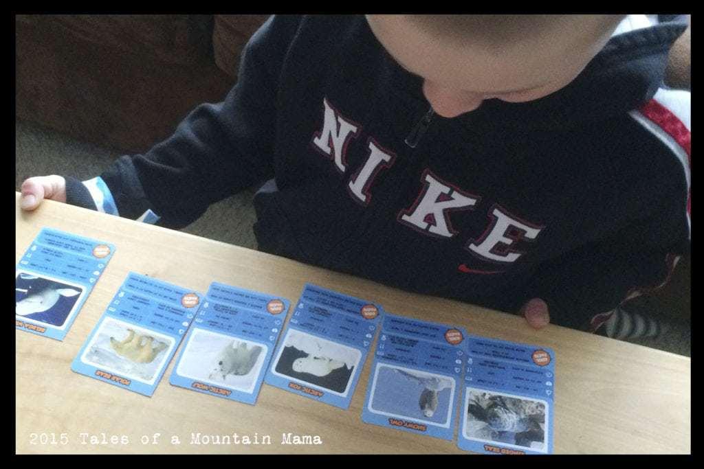 Junior Explorers Review