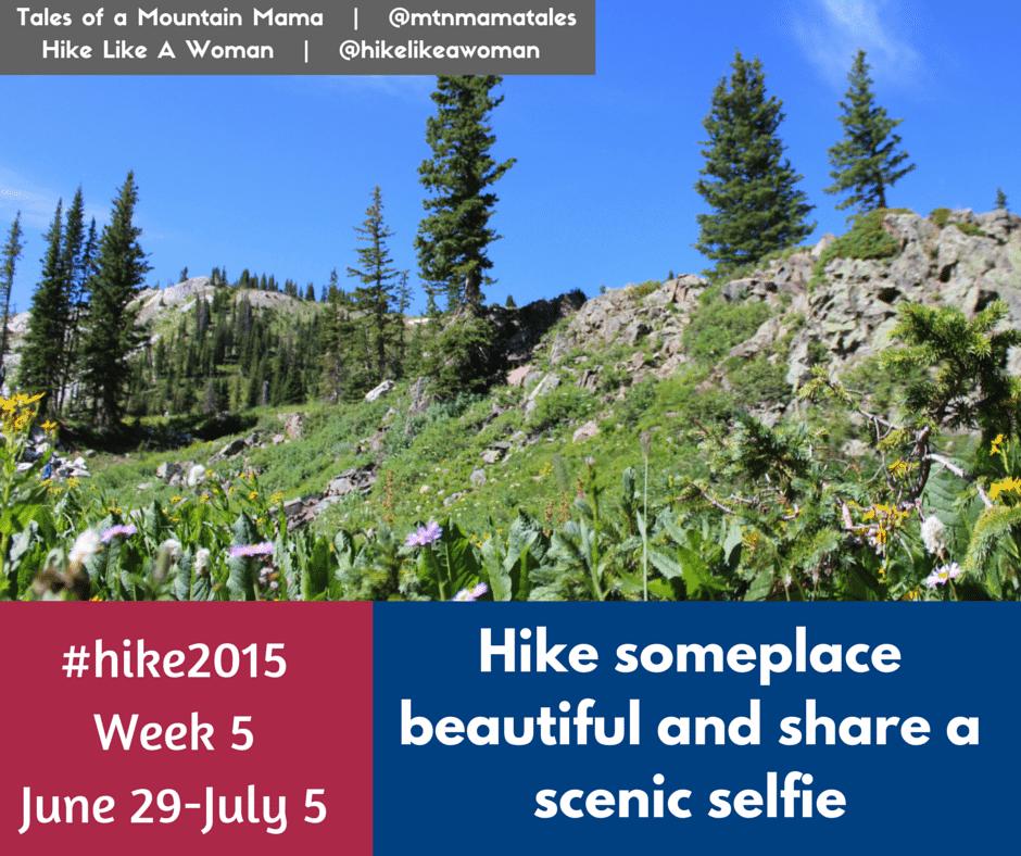 Hike 2015 - Week 5 + Last week's winners