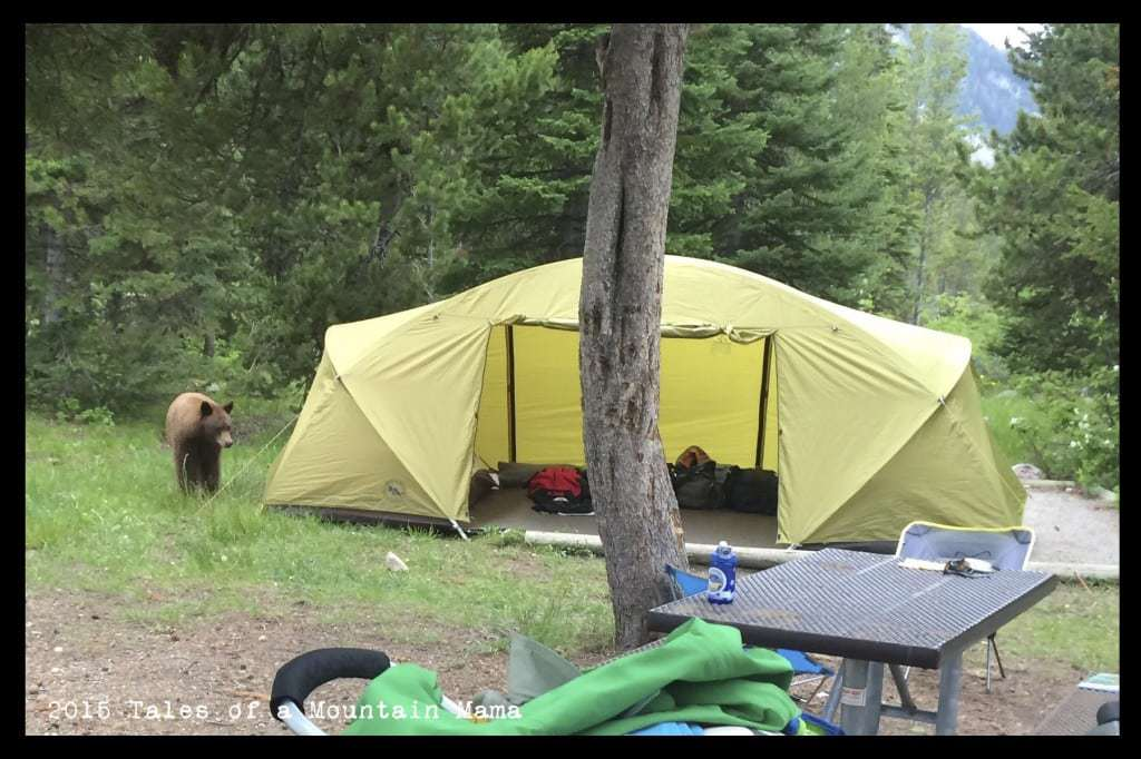 Big Agnes Wyoming Trail 4 Tent Review & Big Agnes Wyoming Trail 4 Tent Review - Tales of a Mountain Mama