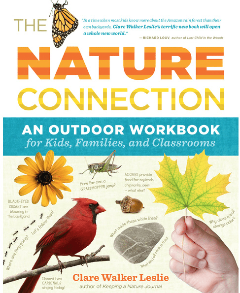 Newly Published Outdoor-Themed Books for Families + Giveaway