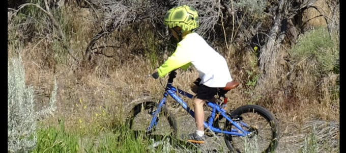 Cleary Hedgehog 16″ Bike Review