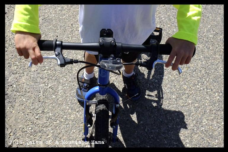 "Cleary Hedgehog 16"" Bike Review"