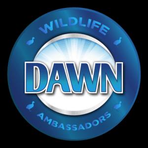dawn-ambassadors-logo_8-26-2