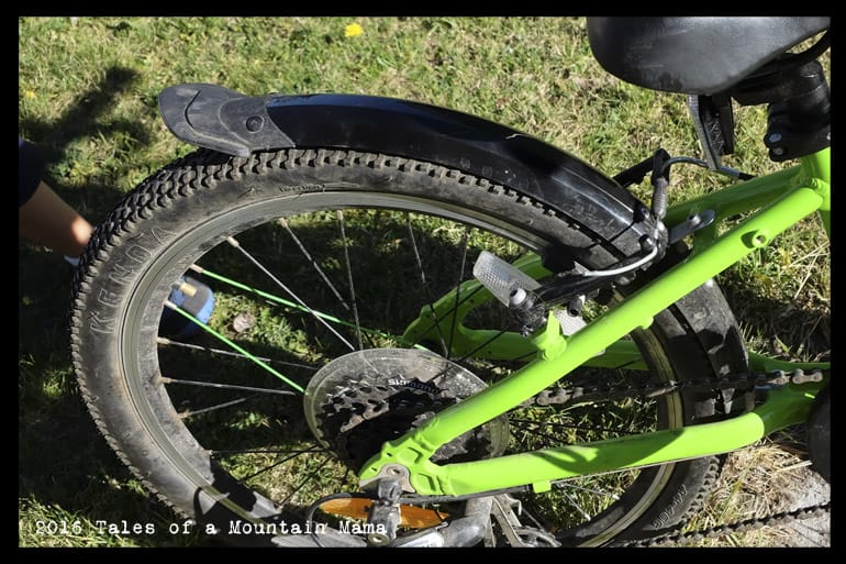 Frog 52 Bike Review Tales Of A Mountain Mama