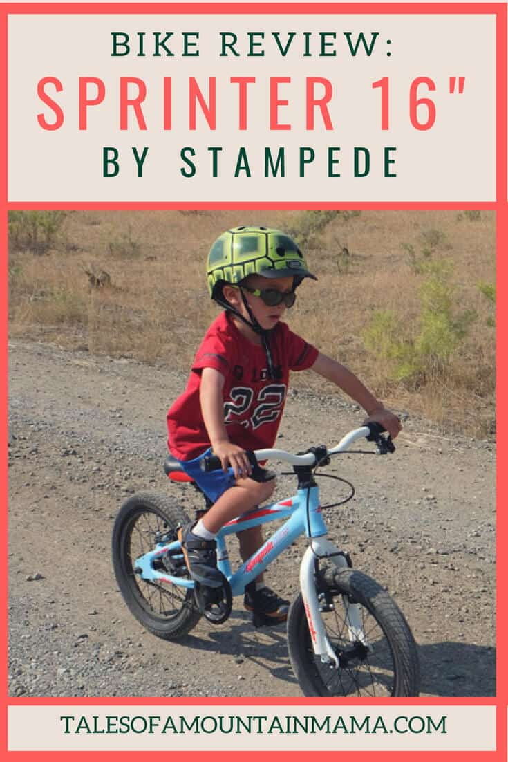 stampede sprinter 16 bike review