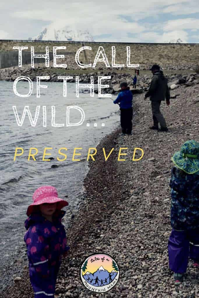 The Call of the Wild...Preserved