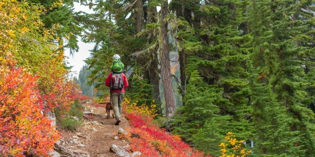 Fall Hiking Safety