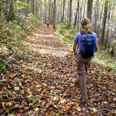 Child hiking on trail with leaves