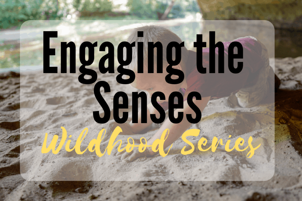 Engaging the Senses
