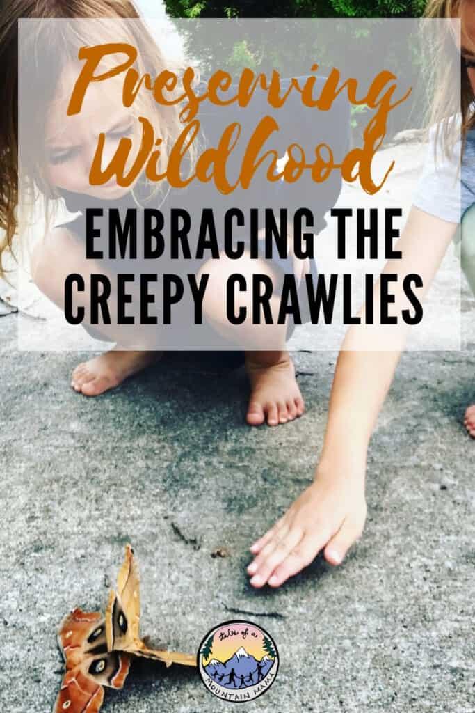 Preserving Wildhood Creepy Crawlies