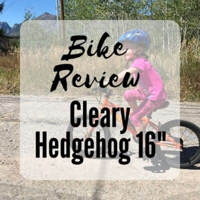 Cleary Hedgehog