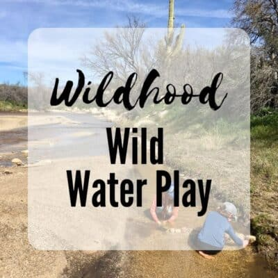 Wiid Water Play