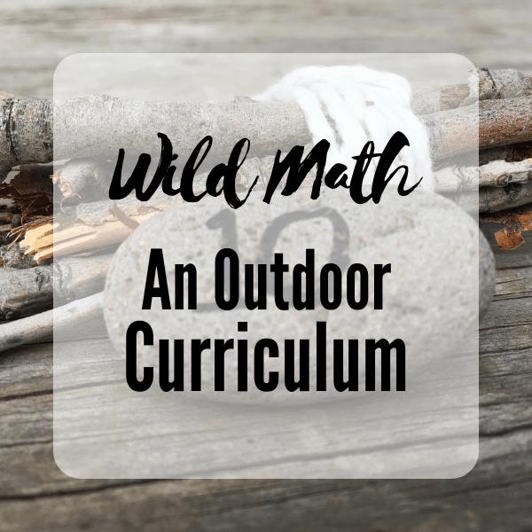 Wild Math
