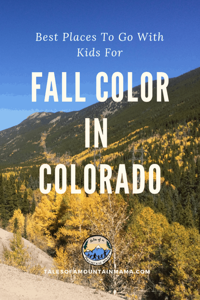 See Fall in Colorado