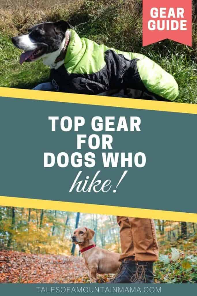 Top Hiking Gear for Dogs