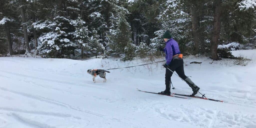 Skijorring