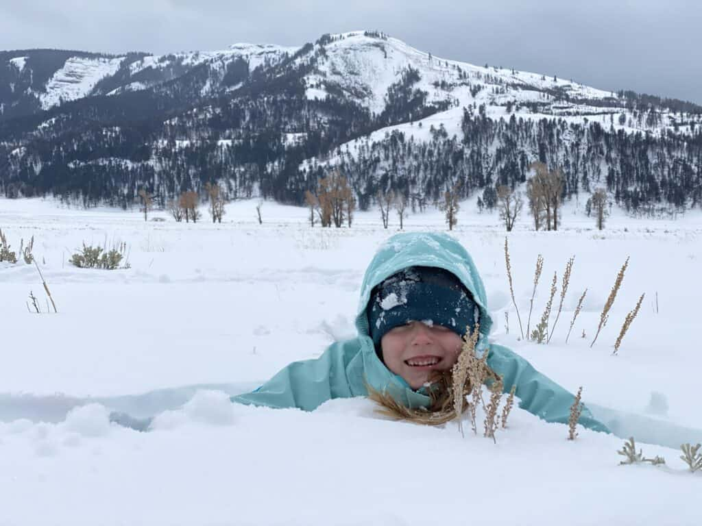 play in Yellowstone in the winter