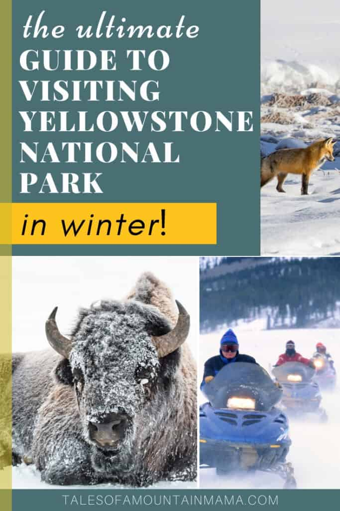Exploring Yellowstone in the Winter