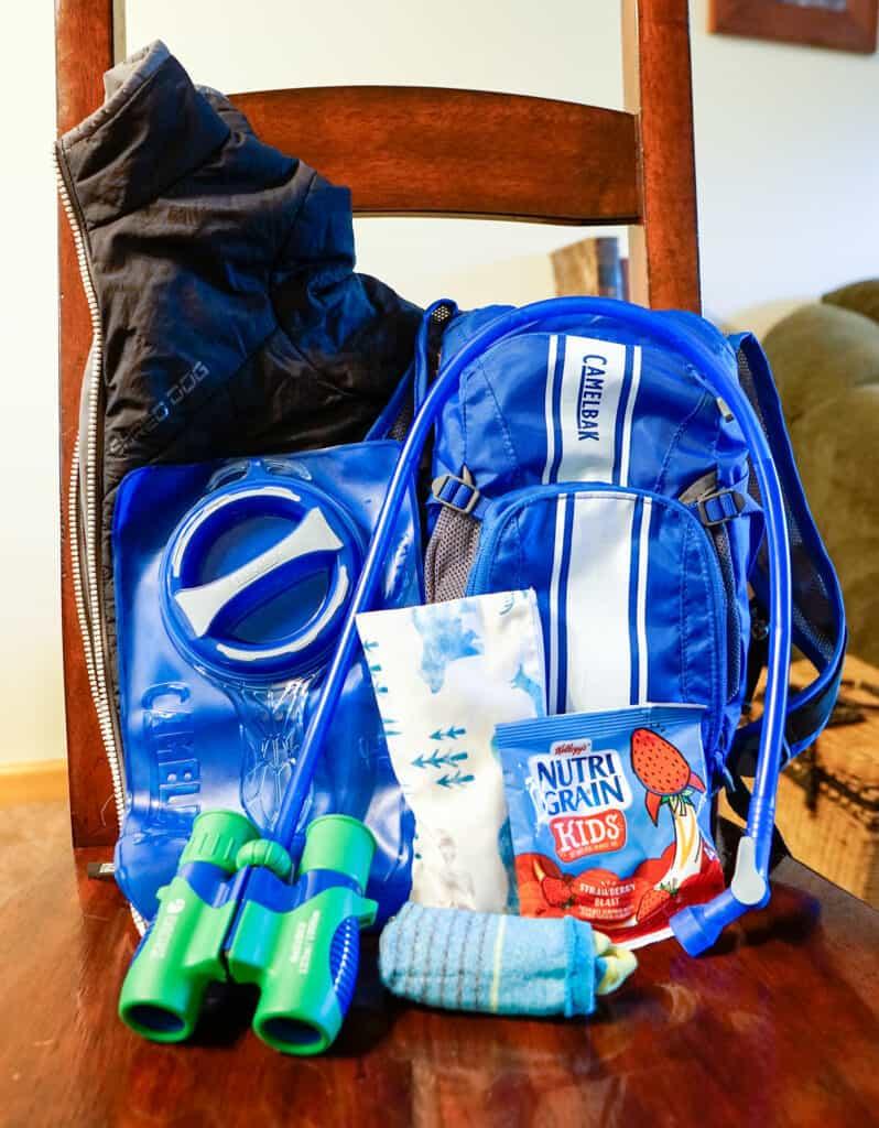 Gear that fits inside Camelbak Mini MULE hydration backpack