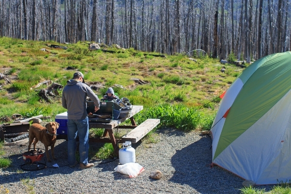 How to Set Up a Camp Kitchen