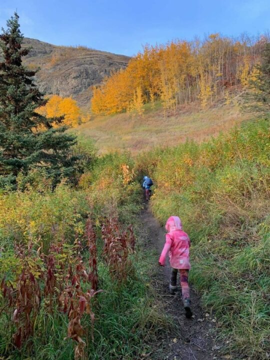 fall microadventure ideas to do with kids