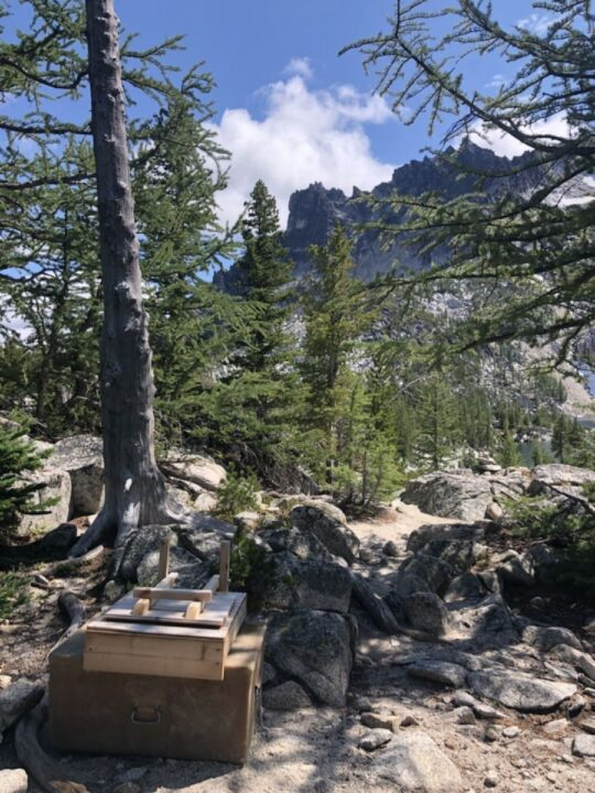 camping with ibs tips